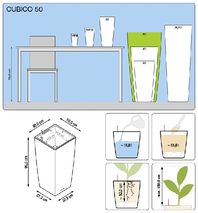office-plants-lechuza-cubico-50